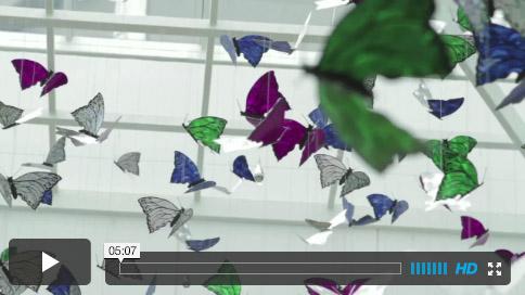 vimeo designcorp